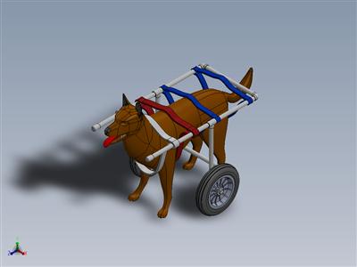 狗的轮椅(狗的轮椅)